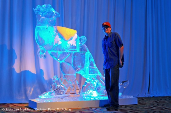star-wars-taun-ice-sculpture